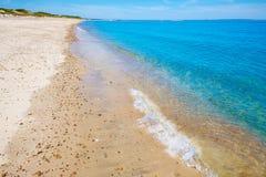 Cape Cod Sandy Neck Beach Massachusetts de V.S. stock foto's