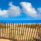Cape Cod Sandy Neck Beach Massachusetts US. Cape Cod Sandy Neck Beach in Barnstable Massachusetts USA Stock Photo