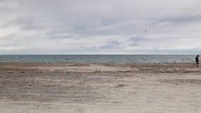 Cape Cod Sandy Neck Beach. Stupid boy on the Cape Cod Sandy Neck Beach in Barnstable Massachusetts USA stock footage