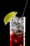 Cape cod, vodka and cranberry Royalty Free Stock Photo