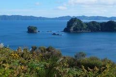 Cape Coromandel. View of cape Coromandel cliff north island Royalty Free Stock Photos