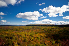 Cape Croker Cliff Autumn Fall Forest Trees landscape Royalty Free Stock Image