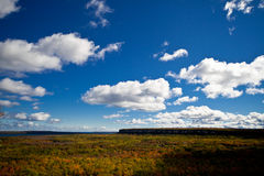 Cape Croker Cliff Autumn Fall Forest Trees landscape Stock Photos