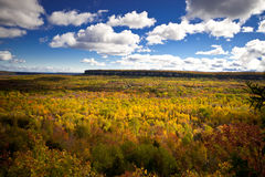 Cape Croker Cliff Autumn Fall Forest Trees landscape. Cape Croker Cliff Autumn Fall Forest Trees panoramic landscape Stock Photography