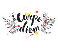 Cape diem. Hand written latin quote. Carpe diem. Modern calligraphy. Ink phase with watercolor splashes and floral elements isolated on white background Stock Images