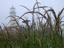 Cape Disappointment Lighthouse, Washington Stock Photos