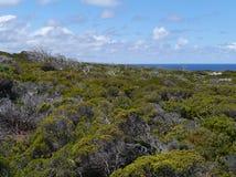 Cape du Couedic sull'isola del canguro Immagine Stock
