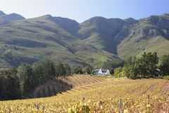 A Cape Dutch Homestead on a wine farm near Franschoek Stock Photo