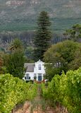 Cape Dutch style farm building at Groot Constantia, Cape Town, South Africa, with vineyard in the foreground and mountains behind. Cape Dutch style farm building stock photography