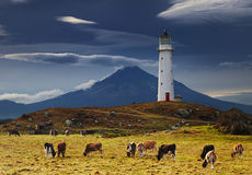 Cape Egmont Lighthouse, New Zealand Stock Images