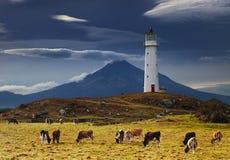 Cape Egmont Lighthouse, New Zealand. Cape Egmont Lighthouse and Taranaki Mount on background, New Zealand Stock Images