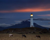 Cape Egmont Lighthouse, New Zealand stock photos