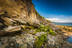 Cape Enrage Royalty Free Stock Photo