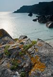 Kynance Cove Cliffs and Cape Fig stock images