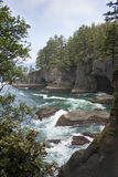 Cape Flattery Coastline. Cape Flattery in the state of Washington is the most northwest point in the contiguous United States. This trail on the cape takes you Stock Images