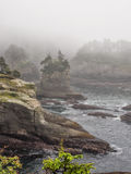 Cape Flattery in the fog Royalty Free Stock Photos