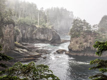 Cape Flattery in the fog Stock Photography