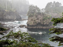 Cape Flattery in the fog Stock Photos