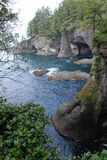 Cape Flattery View Stock Image