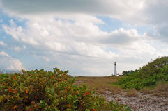 Cape Florida Lighthouse, beach, vegetation, Bill Baggs Cape Florida State Park, protected area, blades of grass, Key Biscayne Stock Photo