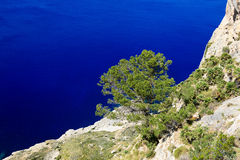The Cape Formentor in Mallorca island Stock Image