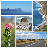 Cape of good hope collage royalty free stock photography