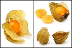 Cape gooseberry. Stock Photos
