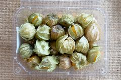 Cape gooseberry fruit benefit Royalty Free Stock Image