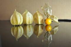 Cape gooseberry fruit. Organic food vegetable golden berry tasty royalty free stock photos