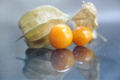 Cape gooseberry fruit. Organic food vegetable golden berry tasty royalty free stock images