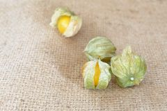 Cape gooseberry fruit Royalty Free Stock Images
