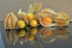 Cape gooseberry fruit. Organic food vegetable golden berry tasty stock photo
