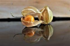 Cape gooseberry fruit. Organic food vegetable golden berry tasty royalty free stock image