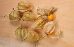Cape gooseberry fruit. Organic food vegetable golden berry tasty stock photos