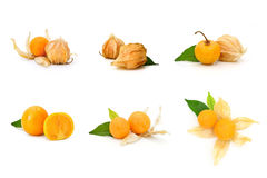 Cape gooseberry fruit Royalty Free Stock Photo