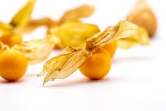 Cape gooseberry fruits Physalis peruviana on white background.Commonly called goldenberry, golden berry, Pichuberry. Close up Cape gooseberry fruits Physalis stock images