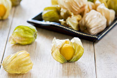 Cape Gooseberry Royalty Free Stock Images