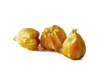 Cape gooseberry isolated on white background Royalty Free Stock Photo