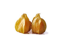 Cape gooseberry isolated on white background Royalty Free Stock Images