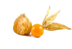 A Cape gooseberry isolated on white background Stock Image