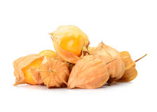 Cape gooseberry isolated on white background Royalty Free Stock Photography