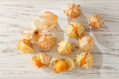 Cape gooseberry physalis fruit ground cherry organic food vegetabl Stock Images