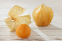 Cape gooseberry physalis fruit ground cherry organic food vegetabl Stock Photos