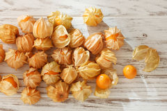 Cape gooseberry physalis fruit ground cherry organic food vegetabl Royalty Free Stock Images