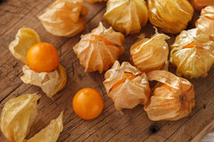 Cape gooseberry physalis fruit ground cherry organic food vegetable Royalty Free Stock Photography