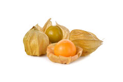 Cape gooseberry (physalis) fruit on white Stock Images