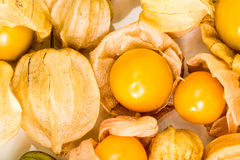 Cape gooseberry, Physalis fruits balls Royalty Free Stock Images