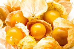 Cape gooseberry, Physalis fruits close up Royalty Free Stock Photography