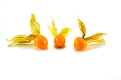 Cape Gooseberry. Physalis in the genus, and in the Solanaceae family, as well as peppers, tomatoes, tomatoes, potatoes, tobacco, petunia Stock Photography