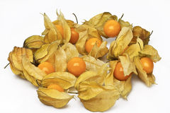 Cape gooseberry (physalis) Royalty Free Stock Photo
